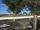 手前に城址碑(の裏側)、奥に持永盛秀の墓