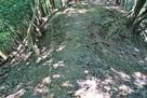 本丸から500m付近の土橋…