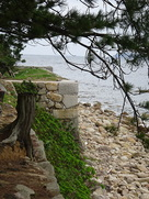 北の丸跡石垣