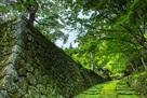 石垣参道と表門…