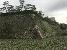 ニノ丸北側の石垣…