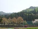 駒寄城遠景