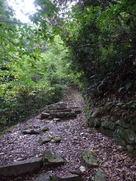詰丸跡への登城路…