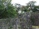 桜御門付近の石垣群