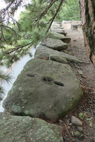 東側の高石垣天端石