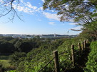 本丸土塁上からの眺望(南側)