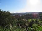 本丸土塁上からの眺望(東側)
