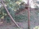 本丸櫓台(二の丸側から)