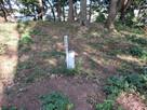 大井戸跡(三の丸跡)