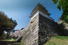 桜と巽櫓(帯郭から)…
