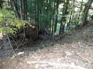 南西尾根と西尾根を隔てる堀切
