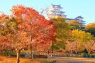 朝日と紅葉のシロトピア記念公園にて…