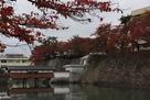 石垣とお堀に紅葉が映えますね…