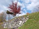 小浜城本丸一の曲輪下の石垣…