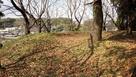 竹迫城 主郭 土塁と横堀…