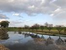 二の丸跡から井田川堤防を望む…