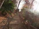 光が差し込む登城路…