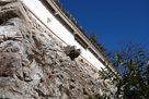 石垣の排水口