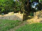 夕日にあたる石垣
