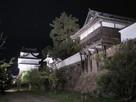 夜の散策〜湯殿から伏見櫓…
