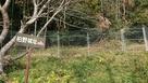 鹿よけの柵の中を通ってはいります。…