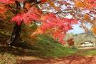 腰曲輪の紅葉
