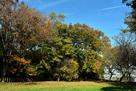 太尾見晴らしの丘公園…