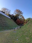 二の丸帯曲輪の土居と土塀