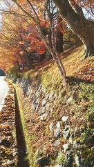 館跡外側の紅葉…