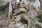 頂上直下南側斜面の石垣…
