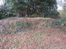 本丸の石塀