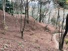飯盛山の曲輪群