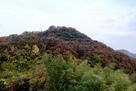 長福寺の北背後にある山の山頂