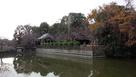 田中城 水堀越しに見る太田神社