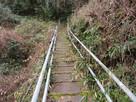 沢を超える木橋