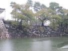 カラフルな石垣…