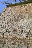 三の丸南西外側石垣でのクリーン作戦…
