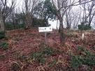 日野山城の本丸跡…