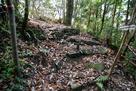 虎口の石段跡
