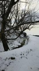 雪の鳥越城 空堀…