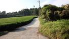 犬尾城への登城路…