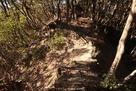 天ヶ岳砦の土橋(南より望む)…