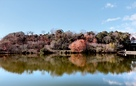 韮山城龍城山と城池…