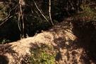 天ヶ岳砦の土橋…