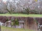東側 石垣