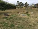 勝瑞城館の枯山水庭園跡…