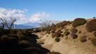 富士山と障子堀…