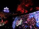 チームラボ・光の祭①…