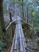 堀切にかかる竹橋…
