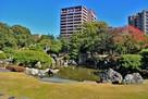 旧徳島城表御殿庭園(西側)…